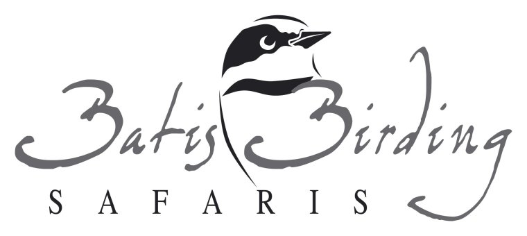 Batis Birding Logo Roy