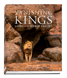 Vanishing Kings cover